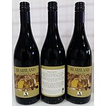 Premium Heartland Shiraz 2009 - Case of 12. RRP $240.00!