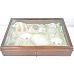 Blackwood Display Case and Seashells