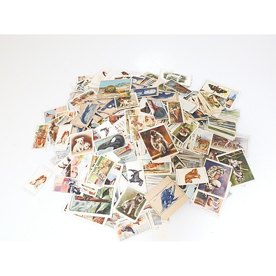 Large Collection of Animal Themed Cigarette Cards