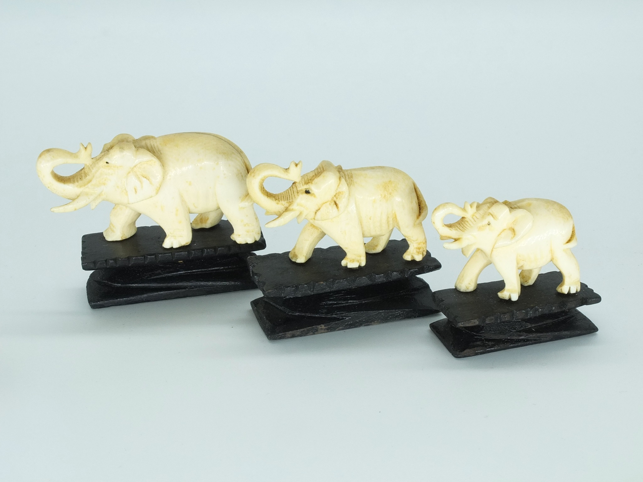'Graduated Set of Three Carved Elephant Ivory Elephants Early to Mid 20th Century'