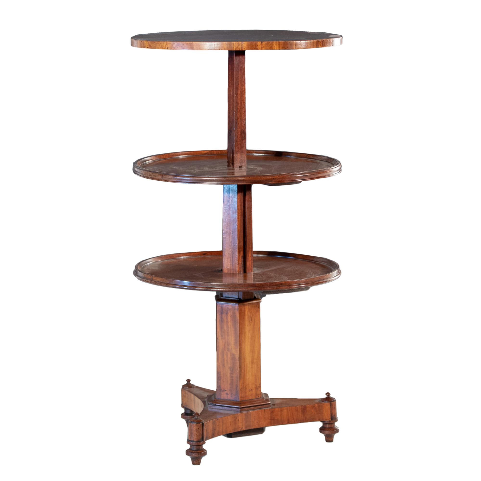 'William IV Mahogany Telescopic Dumbwaiter Wine Table with Faceted Column Circa 1835'