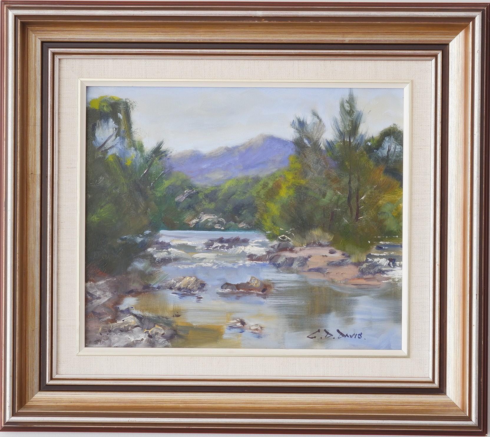 'Geoffrey Davis (1926-) Murrumbidgee Near Pine Island Oil on Board'