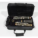 Clarinet In A Diamond Case