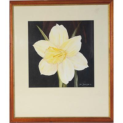 Bert Broekhuyse Daffodil Watercolour