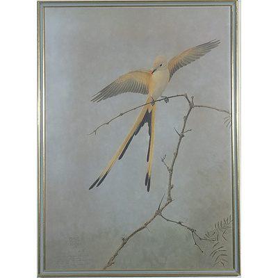 George Miksch Sutton (1898-1982) Scissor-Tailed Flycatcher Limited Edition Print