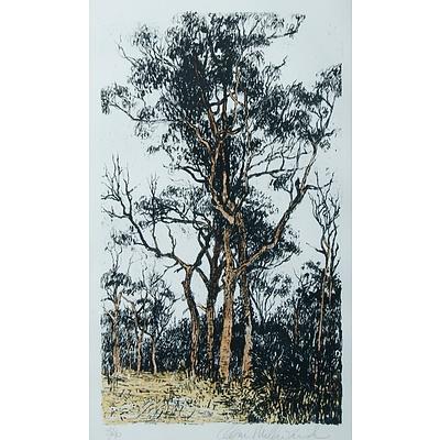 MILLWARD, Clem (b.1929): 'Bloodwoods', Hand Coloured Lithograph 3/40.