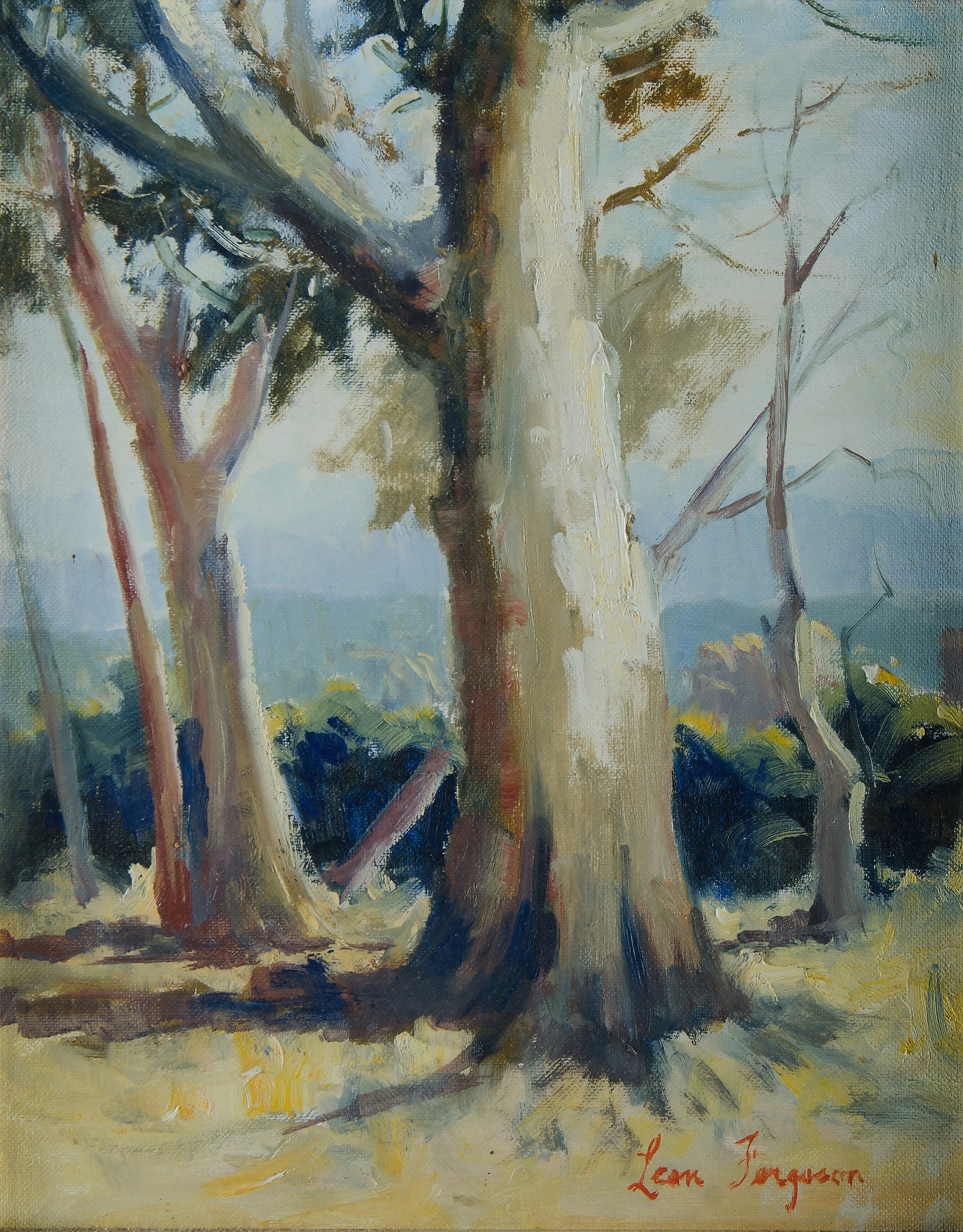 'FERGUSON, Leon (b.1919): Gum Trees in a Clearing Oil on Canvas Board'