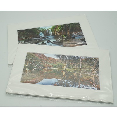 Two Mounted Paul Arnold Photographs