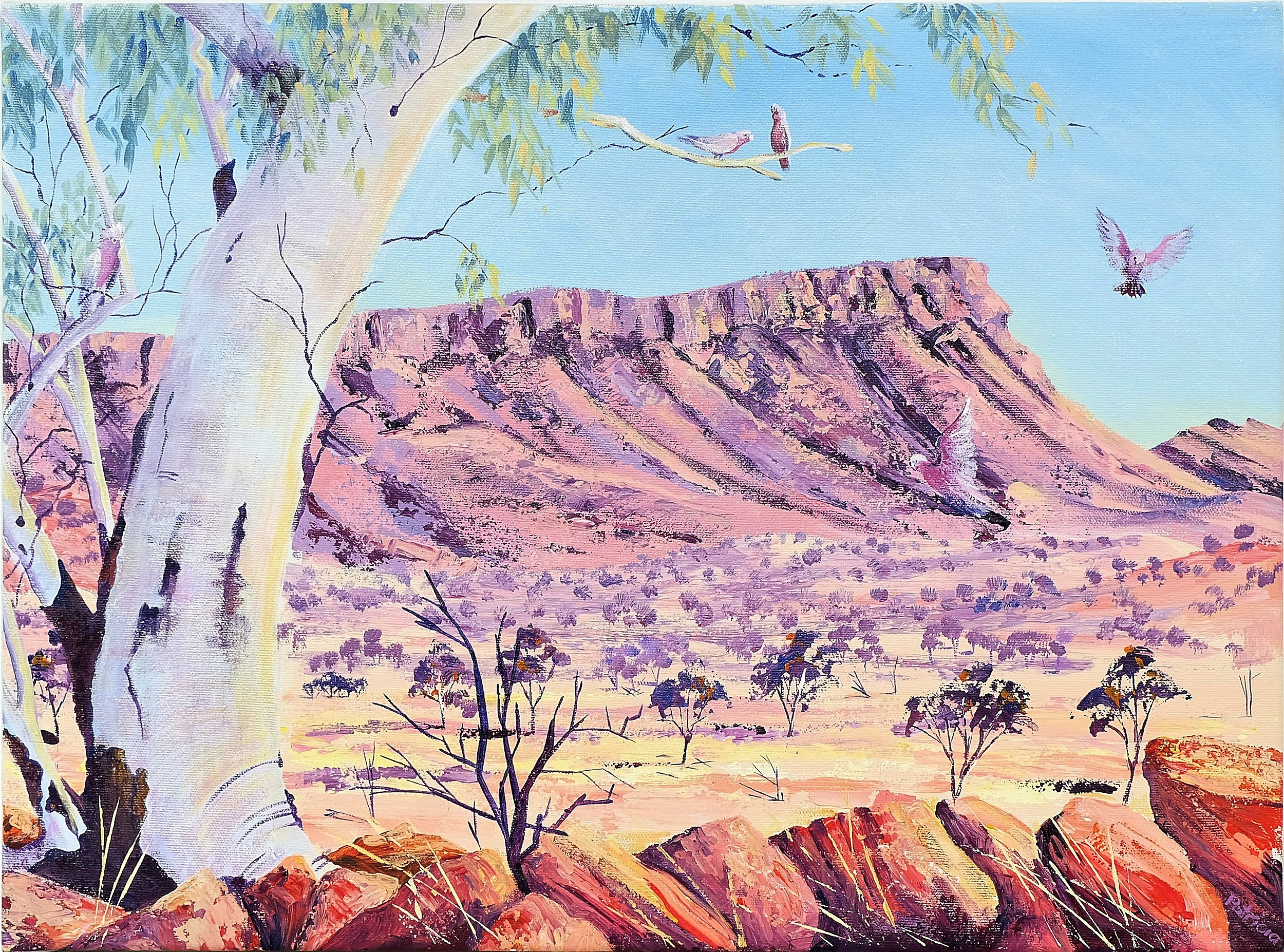 'Patricia Weeks Mt Gillen Central Australia Oil on Canvas'