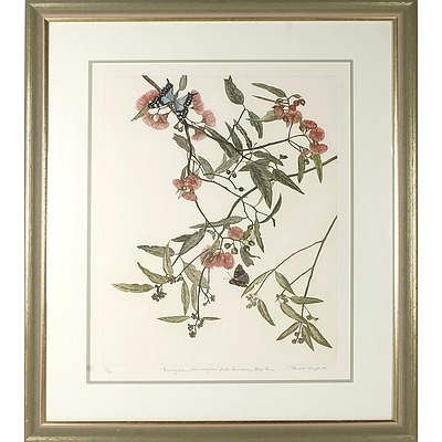 GRIFFITH, Pamela (b.1943) 'Eucalyptus Leucoxylon - South Australian Blue Gum' Coloured Etching 31/60