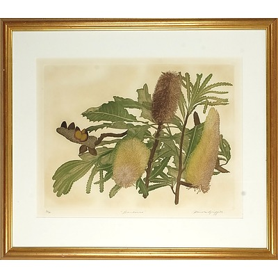GRIFFITH, Pamela (b.1943) 'Banksia' Coloured Etching 54/60