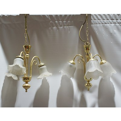 Pair of Floral Cut Glass Shade Electroliers