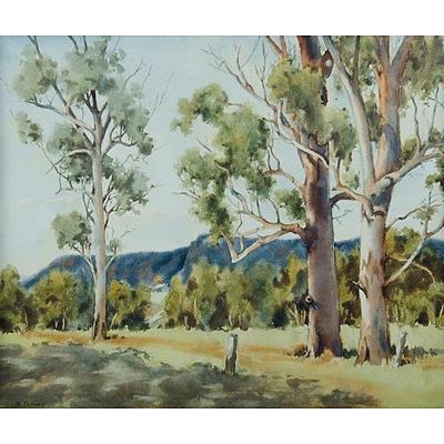 TOOVEY, N, 'Giant Gums Kangaroo Valley', watercolour