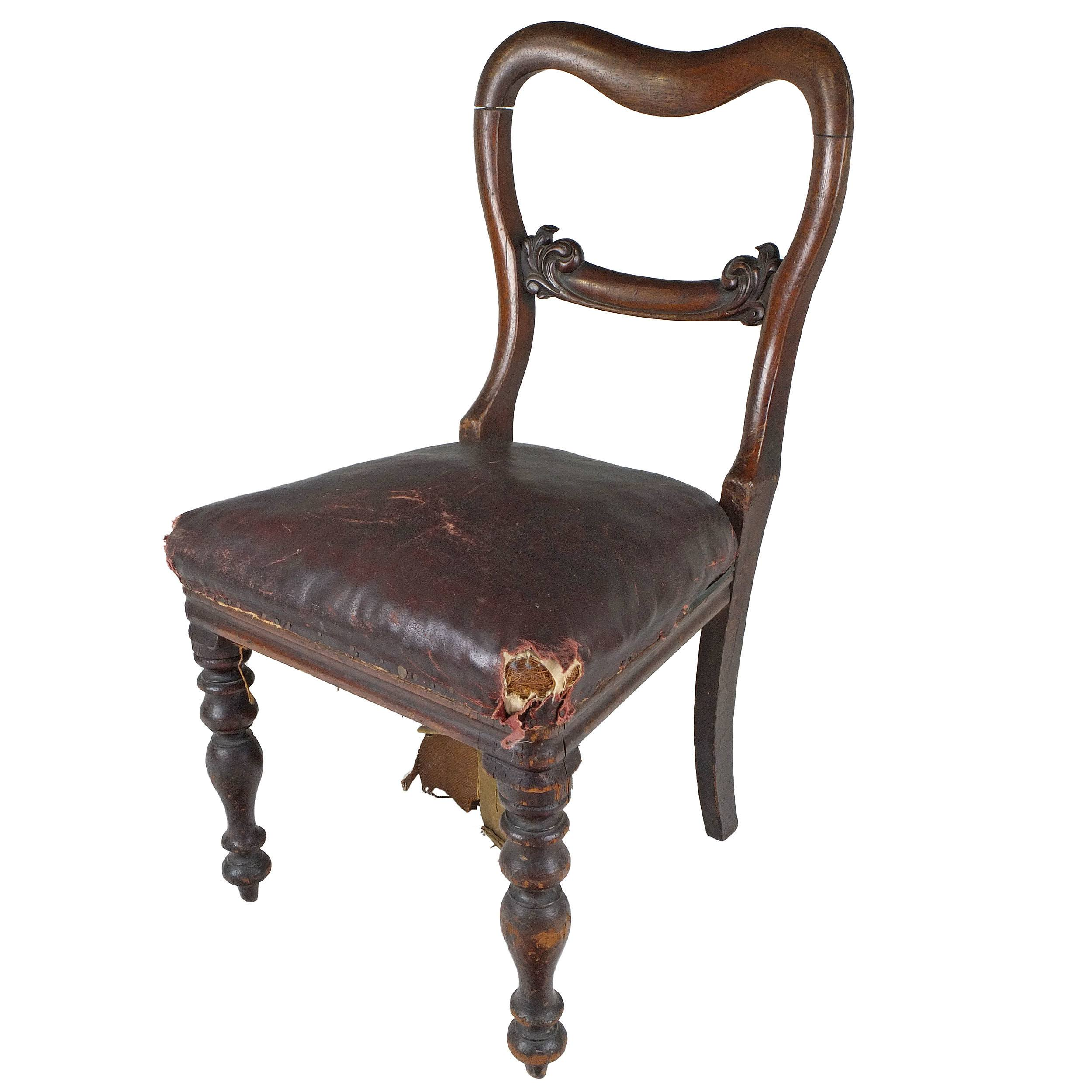 'Well Carved Australian Cedar Side Chair Circa 1850'