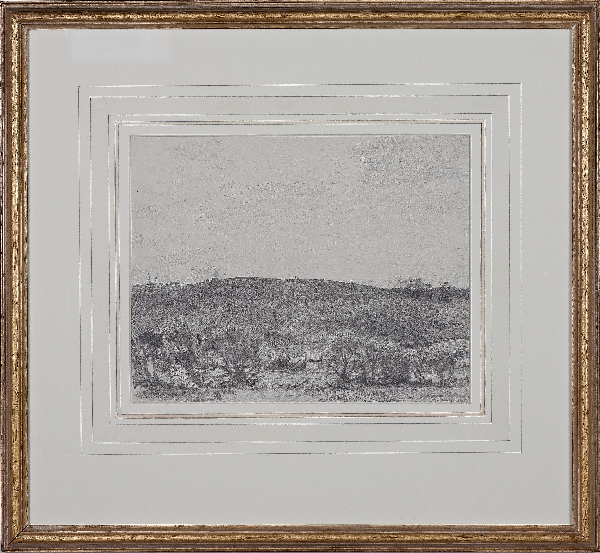 'Hans Heysen (1877-1968) Basket Willows at Balhannah, Pencil on Paper'