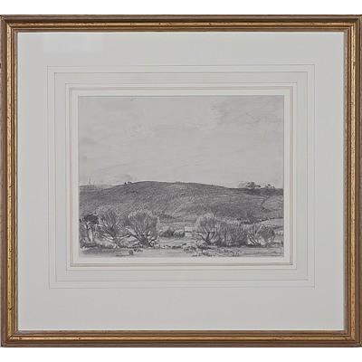 Hans Heysen (1877-1968) Basket Willows at Balhannah, Pencil on Paper