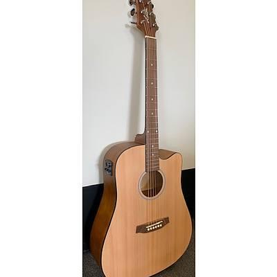 Ashton D20CEQ Acoustic Guitar