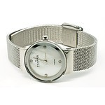 Ladies Skagen Watch with Four Small Diamonds