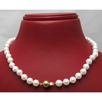 Akoya Cultured Pearls - 14ct Clasp