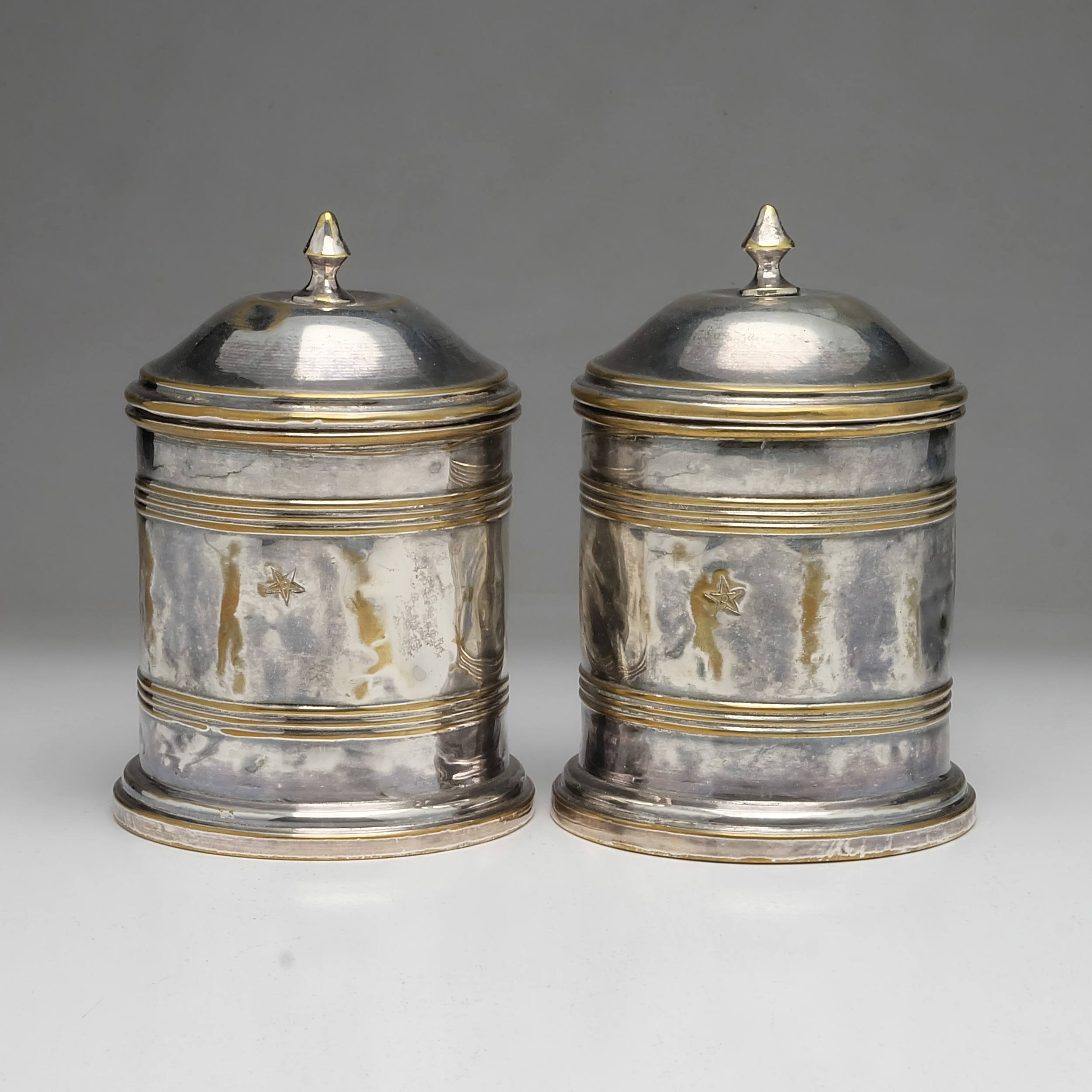 'Pair of Antique Silver Plated Brass Humidors'