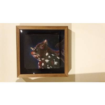 """Painting: """"Eastern Quoll"""" by Emily Birks, original oil pastel"""