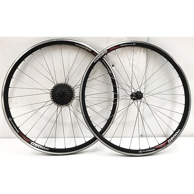 Front & Rear Road Bike Rims - Lot of 8