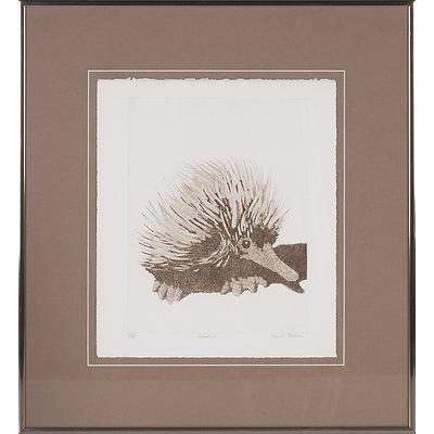 David Preston (1948 -) Echidna, Limited Edition Etching, 19/20