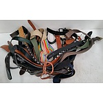 Selection of Various Women's Fashion Belts - Lot of 17