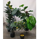 2 x Large Faux Plants and 2 x Smaller Faux Plants