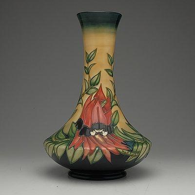 Moorcroft Sturt Desert Pea Vase Designed by Emma Bossons, 87/100, Circa 1998