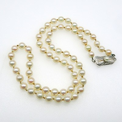 Mikimoto Type Short Strand of Pearls