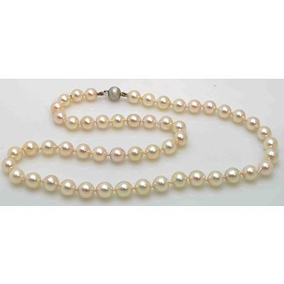 Akoya Cultured Pearl Necklace