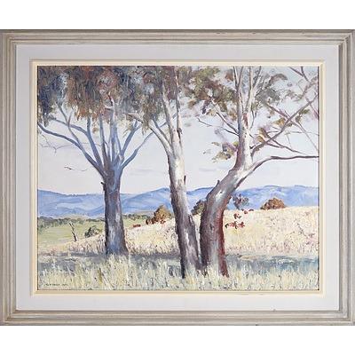 G.D. Davis (Working c.1966) Trees in Paddock 1963, Oil on Board