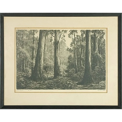 Ernest Abbott (1888-1973) Big Timber Limited Edition Drypoint Engraving