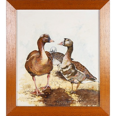 Peter A.P. Mortimore, Geese 1991, Oil on Board