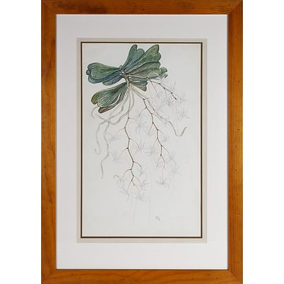 Botanical Watercolour Initialed GH