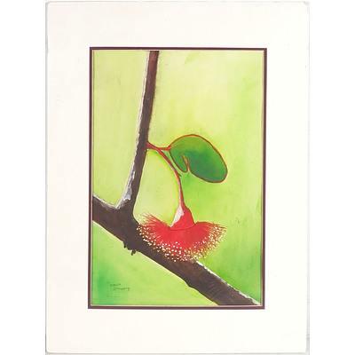 Marida Sonnenberg Flowering Gum Watercolour