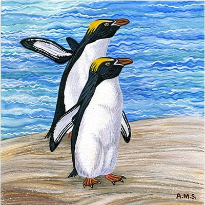Set of 3 limited edition penguin prints by Annette Schneider