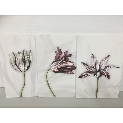 12 Tulip greeting cards with envelopes from the National Library of Australia