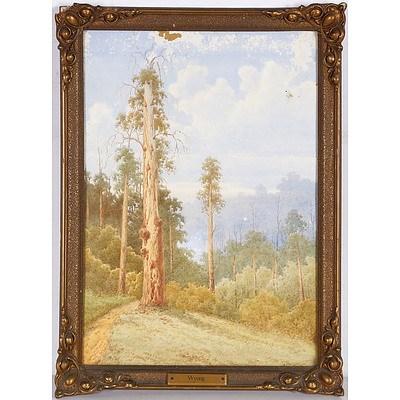 EYRE Gladstone (1863-1933) 'Wyong'