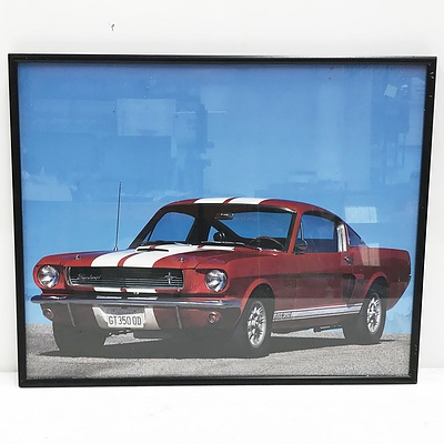 Framed 1966 Ford Mustang Shelby GT 350 Photograph