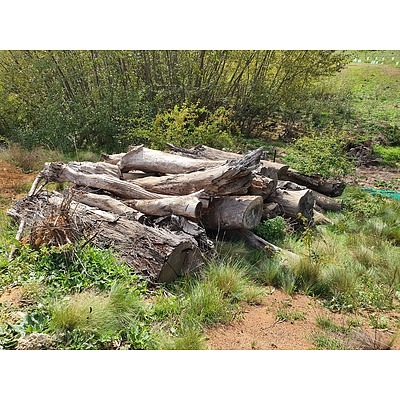 Lot 276 - Approx 12 Tonnes of Logs (Ideal Firewood)