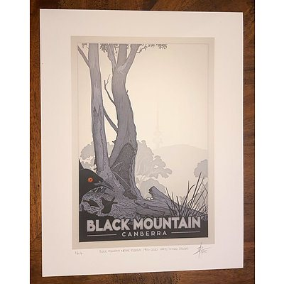 """Print: """"Black Mountain Nature Reserve, 1970-2020: White-winged choughs"""" by David Pope."""