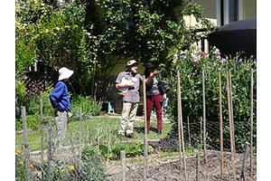Lyneham Organic Garden Tour and Seasonal Food Hamper