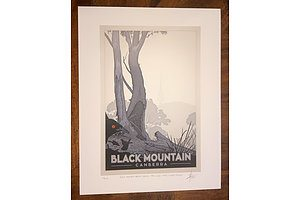 "Print: ""Black Mountain Nature Reserve, 1970-2020: White-winged choughs"" by David Pope."