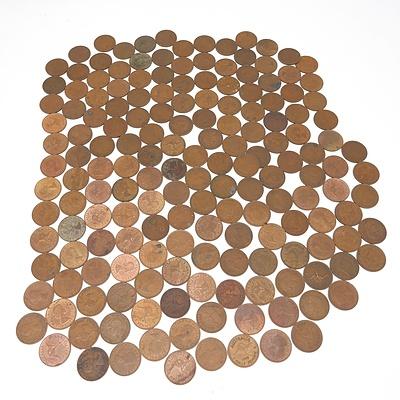 Group of Australian Half Pennies