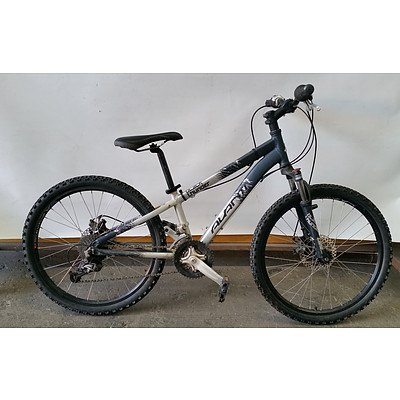 Avanti Black Thunder 21 Speed Mountain Bike