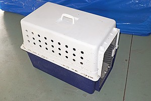Travelling Pet Carrier