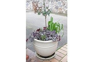 Glazed Stoneware Garden Planter