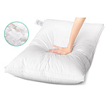 3977-PILLOW-DFD-WALLX2-E.jpg